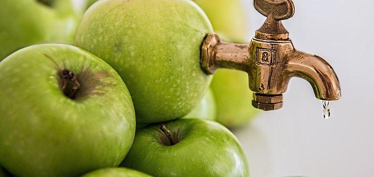 NaTourErlebnis Apfelfest mit Vermostung eigener Äpfel